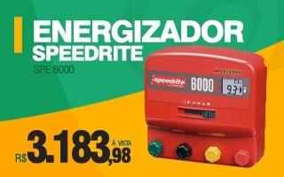energizador speedrite 6000i