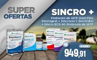 Sincro + ourofino
