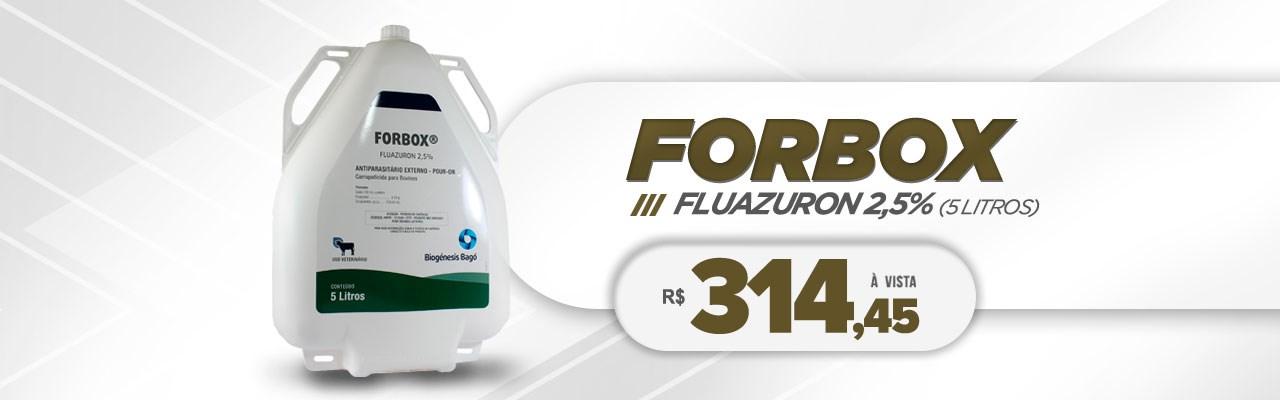 forbox 5 litros