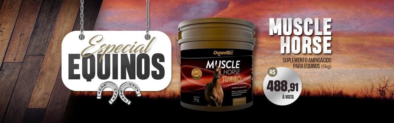 muscle horse organnact