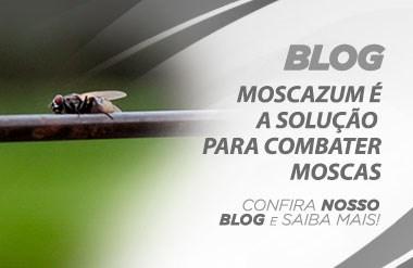 blog moscazum