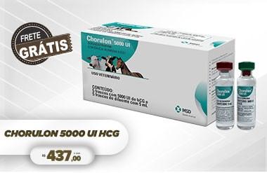 CHORULON HCG