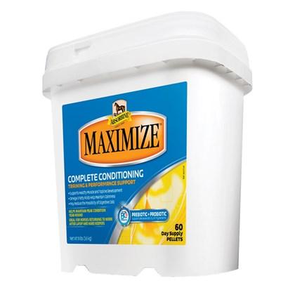 ABSORBINE MAXIMIZE PARA GANHO DE MUSCULO - 3,6 KG - ABSORMINE