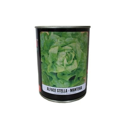 Alface Stella Manteiga – 5.000 Sementes - Feltrin