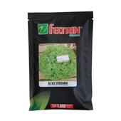 Alface Veneranda -  5.000 sementes – Feltrin