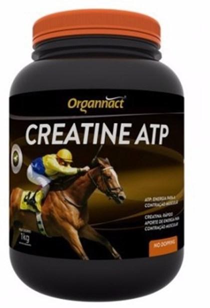 CREATINE ATP 1 KG  -  ORGANACT