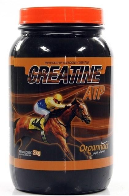 CREATINE ATP 2 KG - ORGANACT