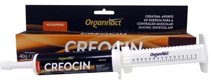 CREOCIN 45 GR - ORGANNACT