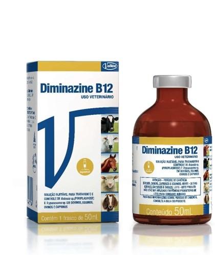 DIMINAZINE VALLEE B12 - 50 ML