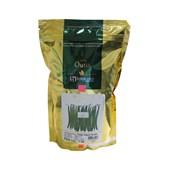 Feijão Vagem Brutus – 1kg - Horticeres