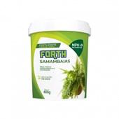 Forth Samambaias – Fertilizante Mineral Misto – 400g
