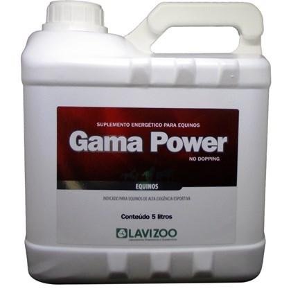 GAMA POWER 5 LITROS - LAVIZOO