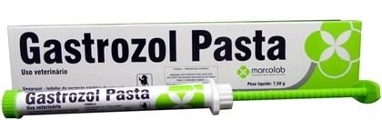GASTROZOL PASTA - CEVA