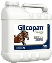 GLICOPAN - 5 LITROS ENERGY VETNIL