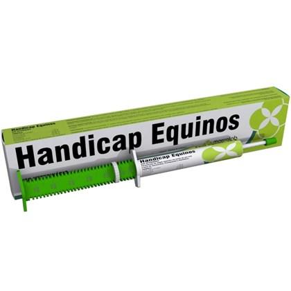 HANDICAP 10G