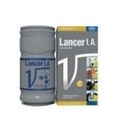 LANCER L.A. 500 ML - VALLEE