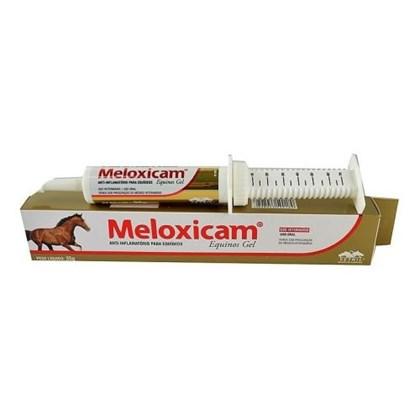 Meloxicam® Equinos Gel Anti-in?amatório – 35 gramas - Vetnil