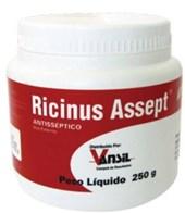 RICINUS ASSEPT PASTA 250 GRAMAS - VANSIL