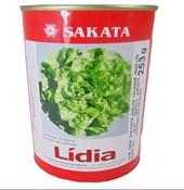 SEMENTE ALFACE LIDIA PEL.7500   SAKATA